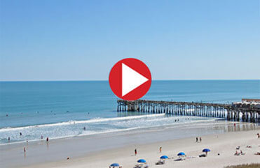 Check out our Surf Cams